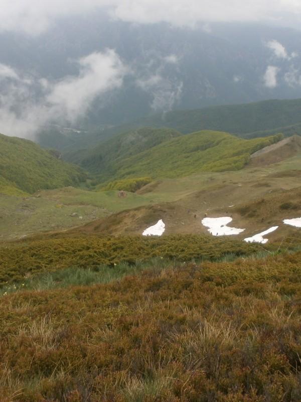 Bistra Mavrovo mountain