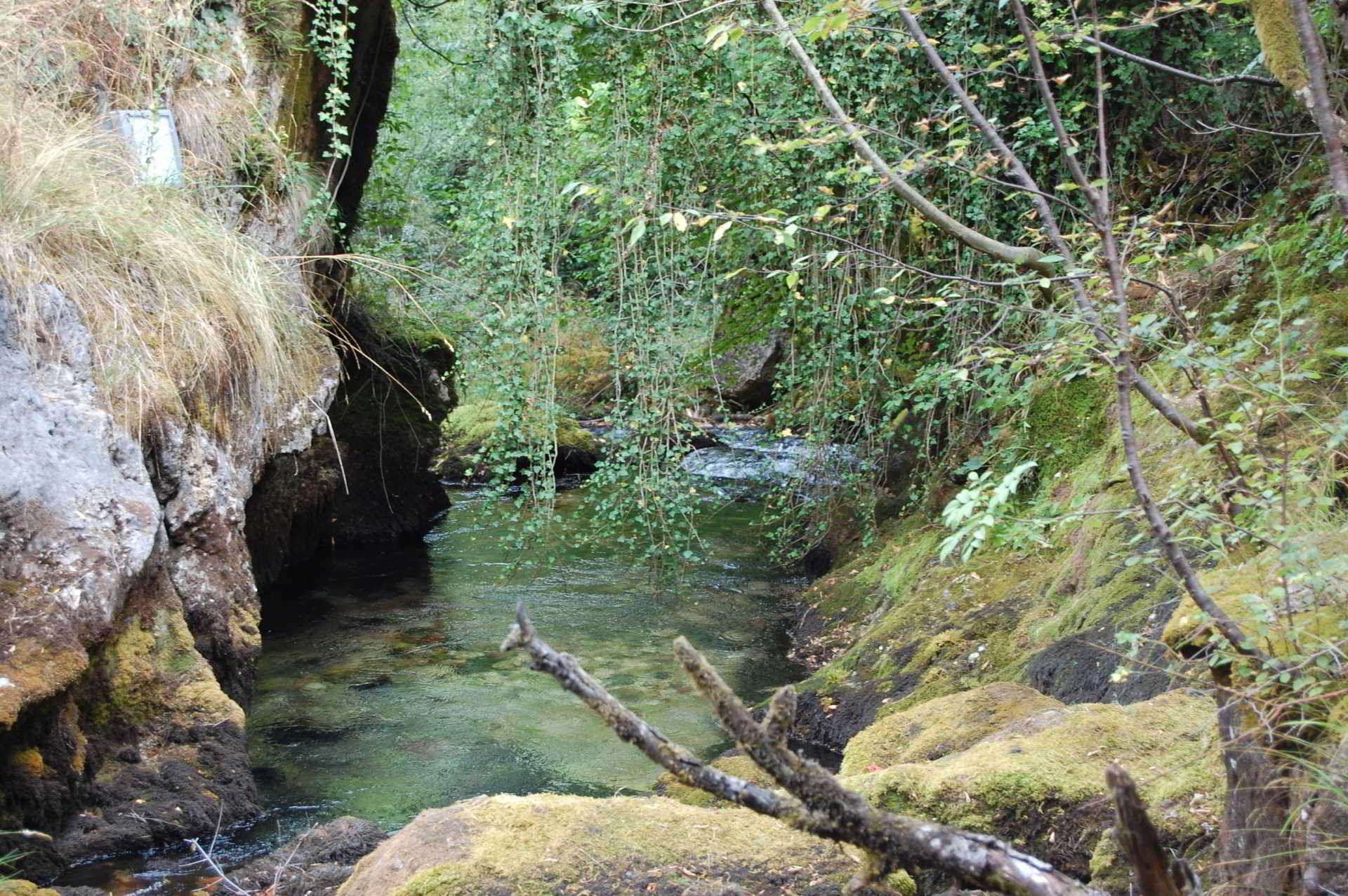 Vevcani river