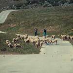 Macedonia on Wheels
