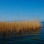 7 Ohrid Lake